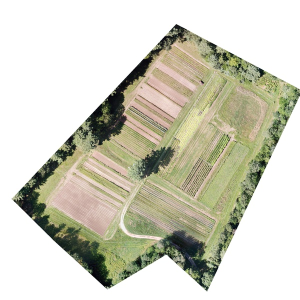 Orthomosaic of farm in Southern Maine.