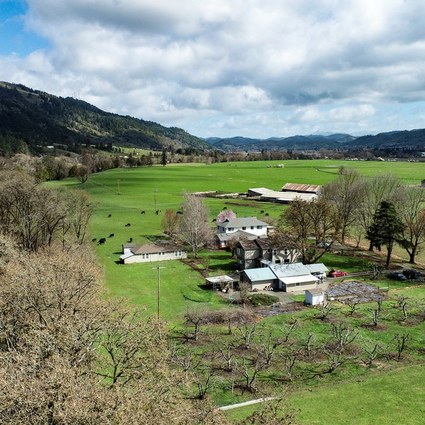 Sonka Ranch