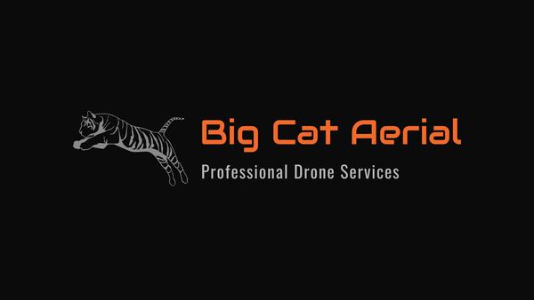 BigCatAerial