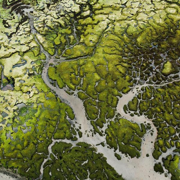 Scotland Kishorn River System III