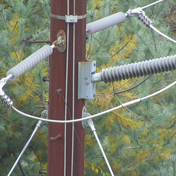 Power line insulator and hardware inspection