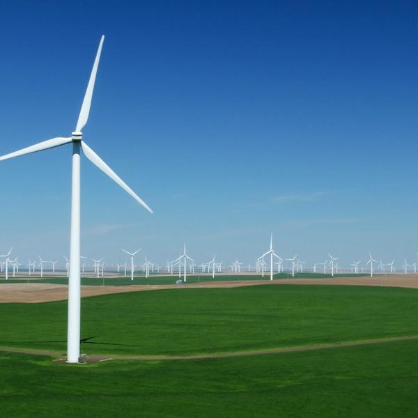 Condon Windfarm