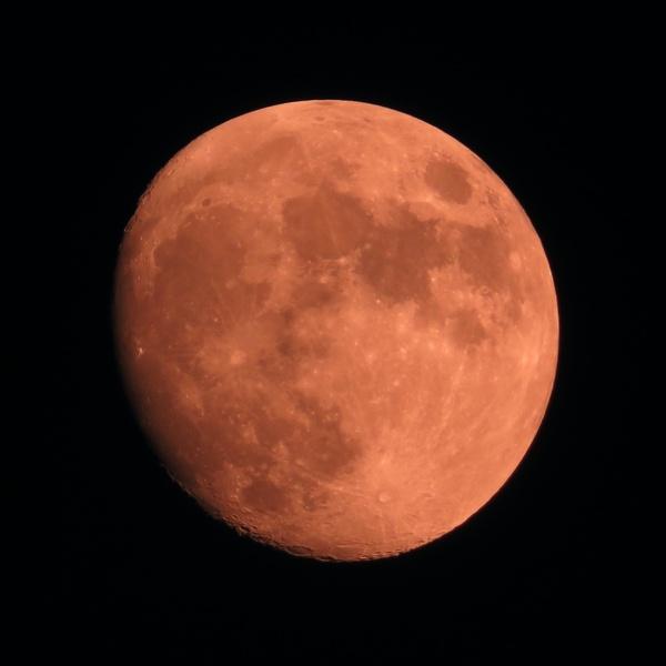 Harvest Moon (Lewisport, KY)