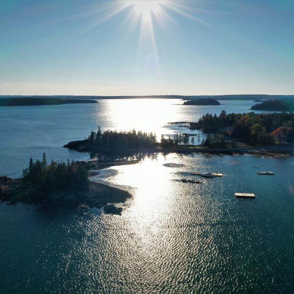Maine Seal Harbor