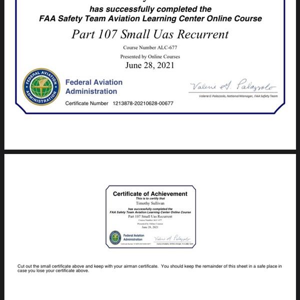 FAA license - recurrent