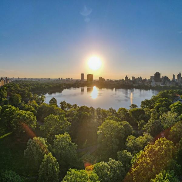 Central Park Shot