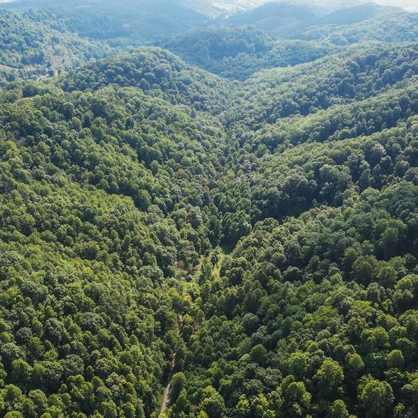 VA Mountain Landscape 3