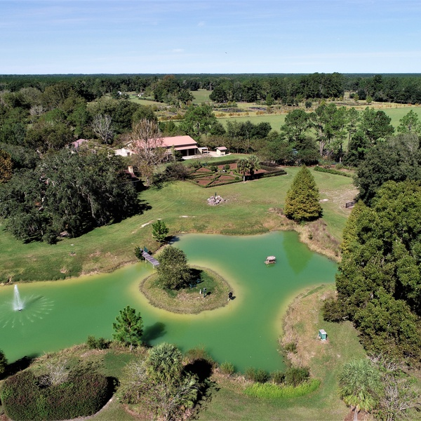 80-acre Residential Property in Alachua County, FL