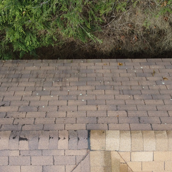 We can get very detailed photos and video of your roof, gutters and chimney.