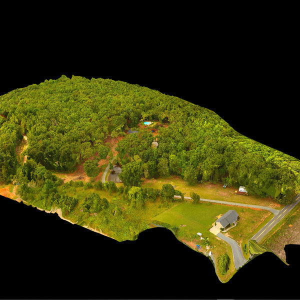 Country Ortho - Stanly County, NC