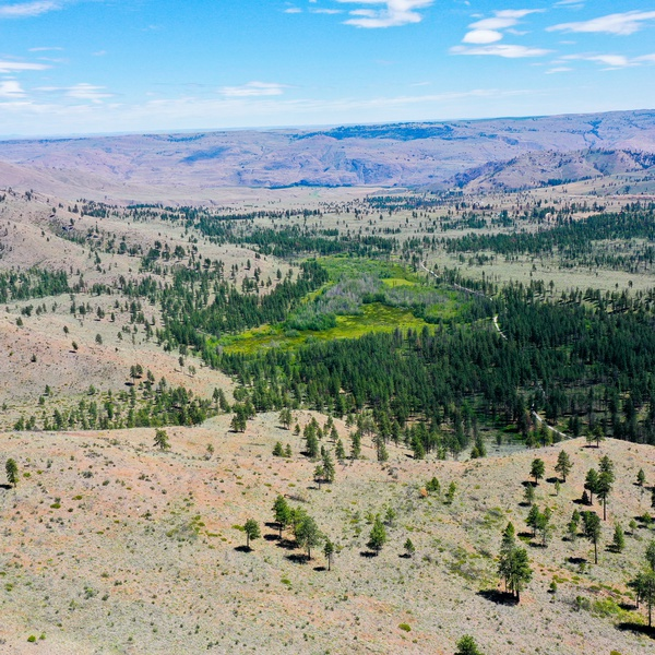 Chelan County Aerial Property View
