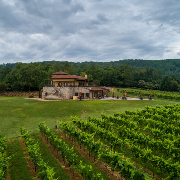Commercial real estate photography at a vineyard.