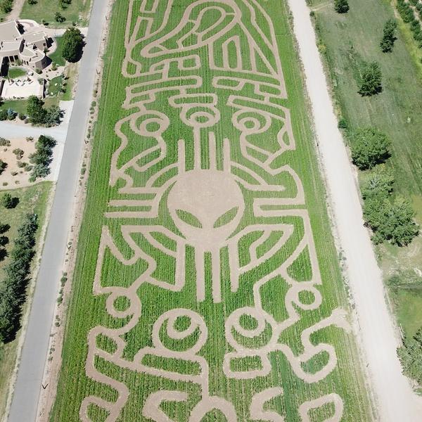 Wagner's Farmland experience Corn Maze in Corrales, NM