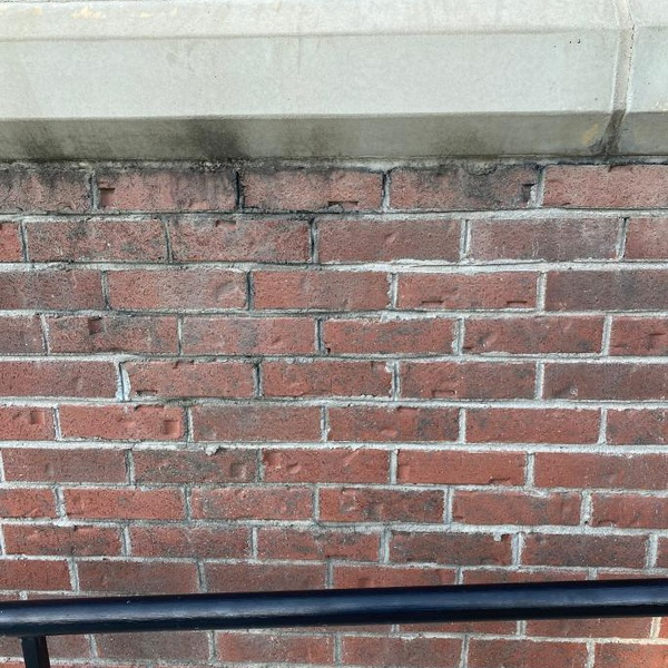 Wall Damage