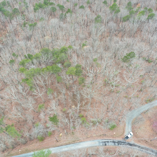 North Georgia Mountains - Vacant Lot