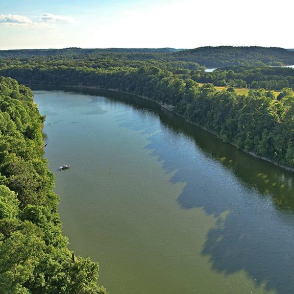 Kentucky or the Amazon?