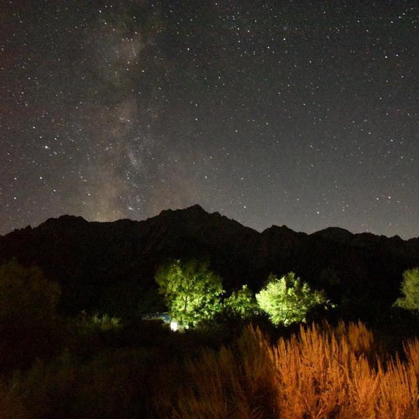 Nighttime Low Light Landscape 1