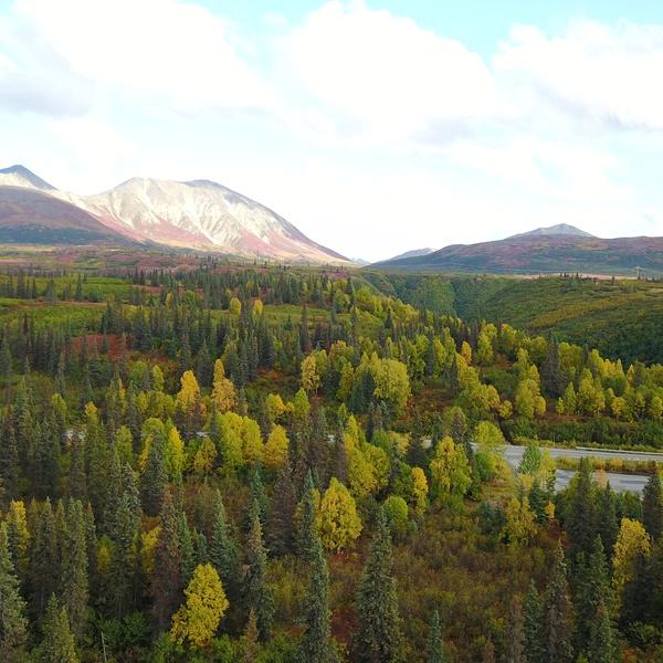 Alaskan hills in the distance