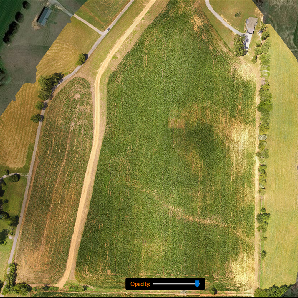 Ag Droning Field Overview